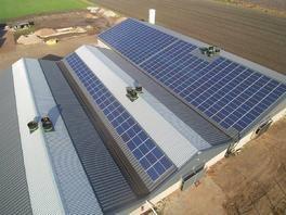 ZSD Solar Landwirtschaft Photovoltaik